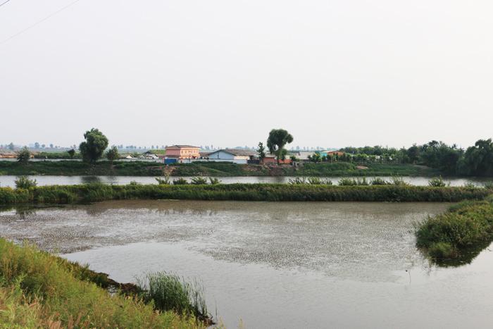 1-mankyongfarm.jpg