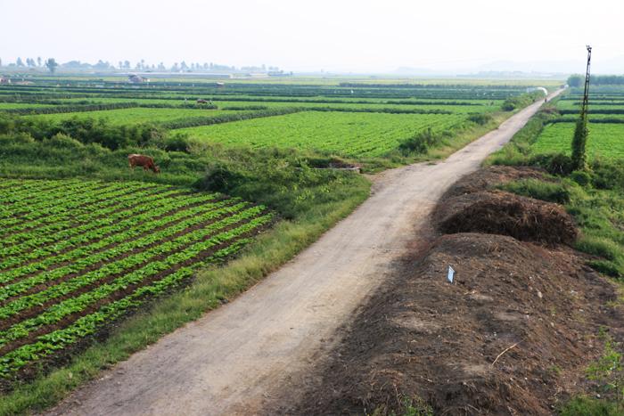 1-mankyongfarm18.jpg