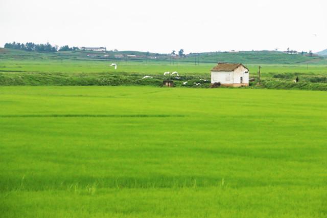 방북75-열차03.jpg