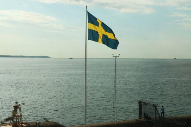 림원섭-스웨덴국기.jpg