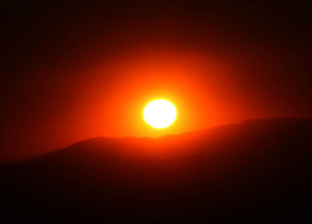 새해2919태양041.jpg